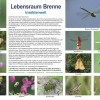 860-Brenne-Insektenwelt-cc