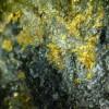 gold_1185-11c